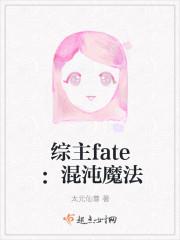 综主fate之混沌魔法